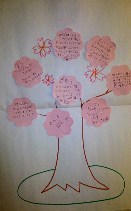桜DSC_1699